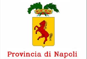 concorsi provincia napoli